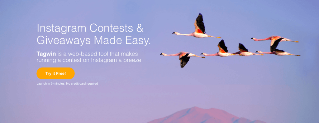 instagram marketing tool run contests giveaways web based tool tagwin