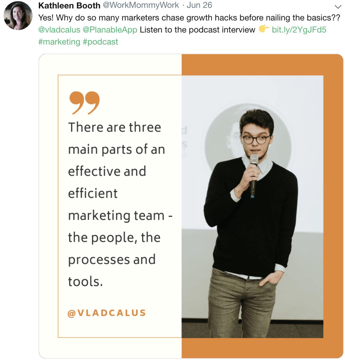 efficient marketing team vlad calus brand management processes